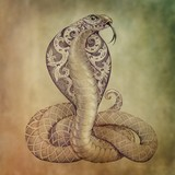Tattoo snake cobra with open cowled - 95985506