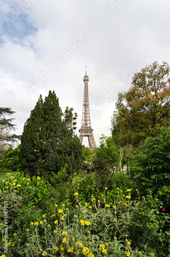 Poster Eiffel Tower and blossoming trees in Paris