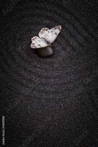 Foto op Canvas Zen A white butterfly sit on black stone in a zen garden