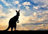 Kangaroo silhouette against a sky