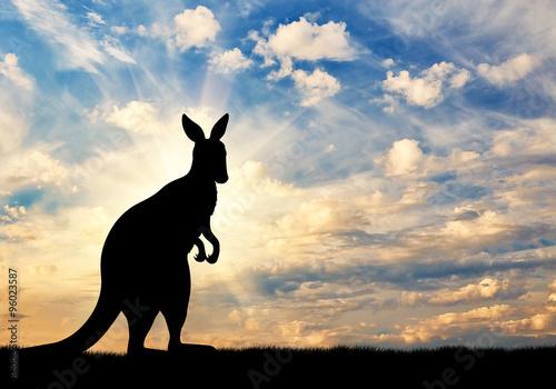 Aluminium Kangoeroe Kangaroo silhouette against a sky