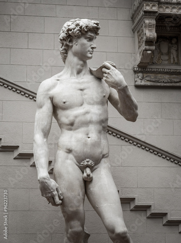 The statue of David by italian artist Michelangelo Poster