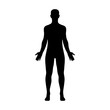Male human body belonging to an adult man