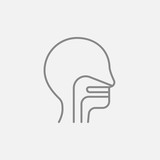 Human head with ear, nose, throat system line icon.