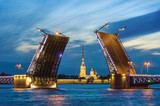 Palace Bridge, Peter and Paul Cathedral. Petersburg. Rosja