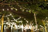 Fototapety decoration light christmas celebration hanging on tree