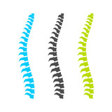 Spine Graphic Set
