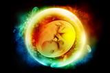Human fetus - 97018375