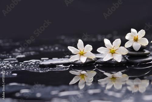 Foto op Canvas Zen Still life with three gardenia on black pebbles