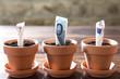 Konzept Finanzierung, Vermögen und Wachstum von Euro und Europa