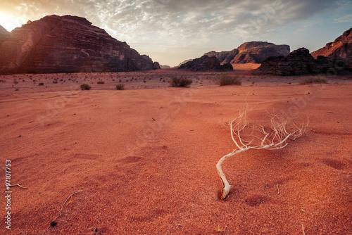 Wadi Rum desert at Sunrise Poster
