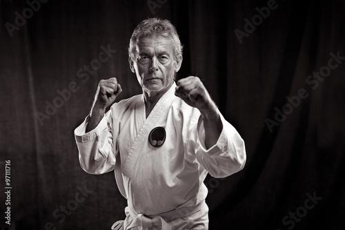 fototapeta na ścianę Portrait eines alten Kampfsportler