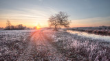 Fototapety Foggy winter sunrise