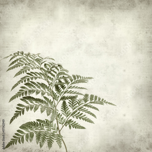 textured old paper background - 97142949