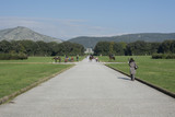 particular of garden in royal palace of Caserta