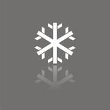 Icono copo de nieve FO REFLEJO