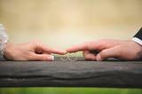 Fototapety Couple Touching Rings