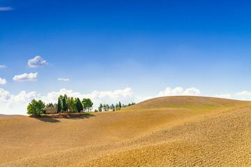 Pola w Toskanii