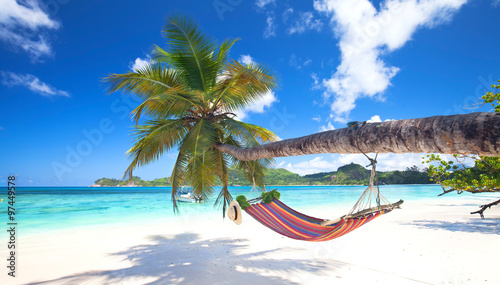 tropischer Strand mit Palmen und Hängematte