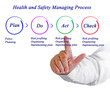 Health and safety management process