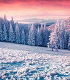Colorful winter sunrise in the misty mountains
