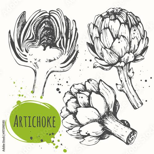 Aartichoke. Set of hand drawn artichoke. Fresh organic food.