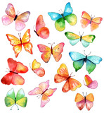15 watercolor butterflies in various colors and shapes, on white backround