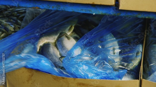 Frozen fish in boxes stock footage and royalty free for Flash freeze fish