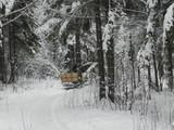 Заснеженный лес и повозка с возницей и запряженной лошадью в зимний вечер