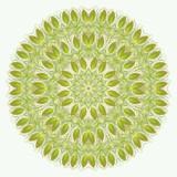 vektor mandala abstraktní vektorové květinové okrasné hranice krajky p