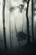fantasy forest vertical photo