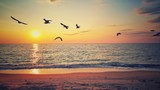 Beautiful sunrise over the beach and flying birds