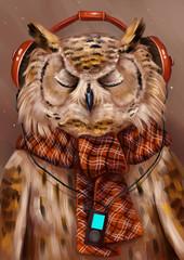 Сова слушает музыку