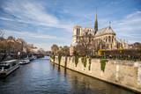 Fototapeta Paris - Katedra Notre-Dame, Paryż, Francja, Europa © DawidDobosz