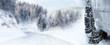 Snowtyre