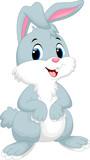 Fototapety Cute rabbit cartoon