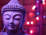 Lilac Buddha Face