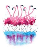 Fototapety Flamingos watercolor painting