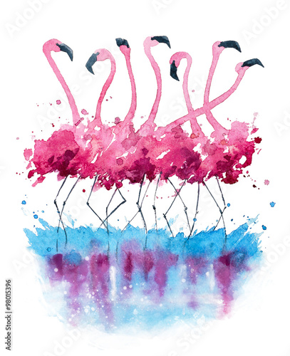 Fototapety, obrazy : Flamingos watercolor painting