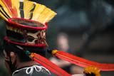 lindo cocar indígena Brasileiro