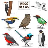 Fototapety Bird set cartoon colorful vector illustration
