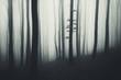 minimal forest landscape with fog