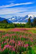 Juneau, Alaska.