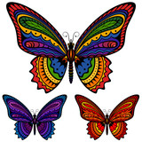 Fototapety Vector illustration of a colorful patterned butterfly, in three different color schemes.