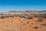 Roter Sand der Namib-Wüste; Namibia