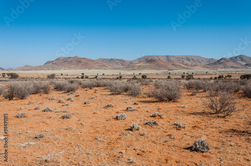 Roter Sand der Namib-Wüste; Namibia Poster