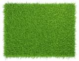 Fototapety Green grass. natural background texture. fresh spring green grass