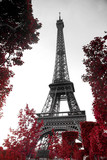 infrared photography Eiffel Tower - 98588317
