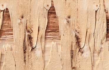 Texture of plywood old