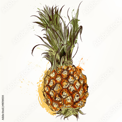 Vector background in tropical style with pineapple - 98784554